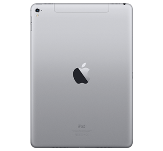 Apple iPad Pro 9,7 4G - Rymdgrå